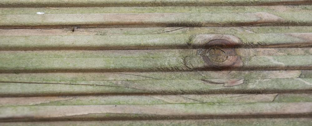 holzterrasse reinigen terrassendiele gruen sibirische larche